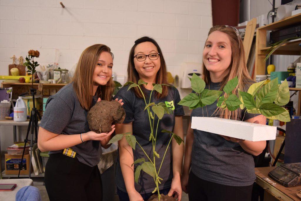 Exhibit Farm Plant Fans